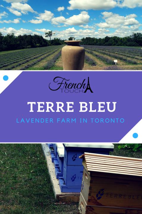 lavender farm terre bleu toronto